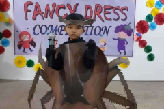 Fancy-dress-competition-9