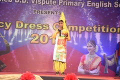 Fancy-Dress-competition-2018-3