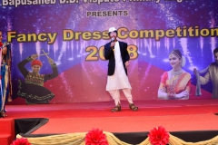 Fancy-Dress-competition-2018-4
