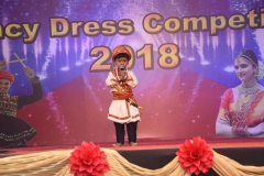 Fancy-Dress-competition-2018-5
